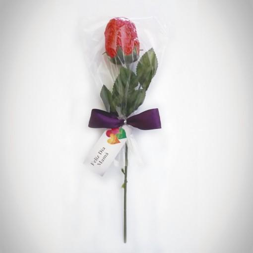 rosa (2)